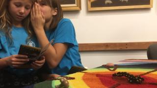 Kuvik tollától szalonnalopó denevérig – játékos természetismeret a NECC-el