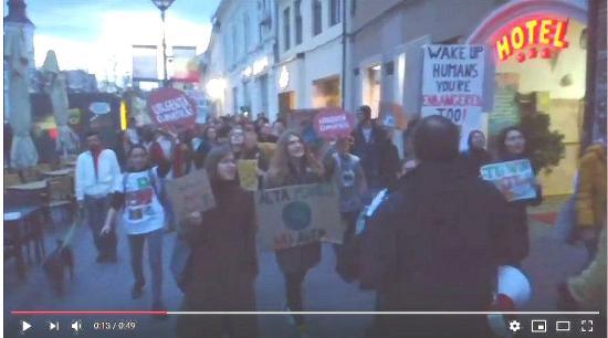 VIDEÓ - Az erdők törvénytelen kivágása ellen tüntettek