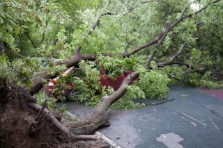 Harmincöt háztetőt sodort le a szél, tizenhárom autó rongálódott meg