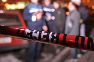 Medvét gázoltak el Parajd és Szováta között - FRISSÍTVE: Leváltották Hargita megye prefektusát