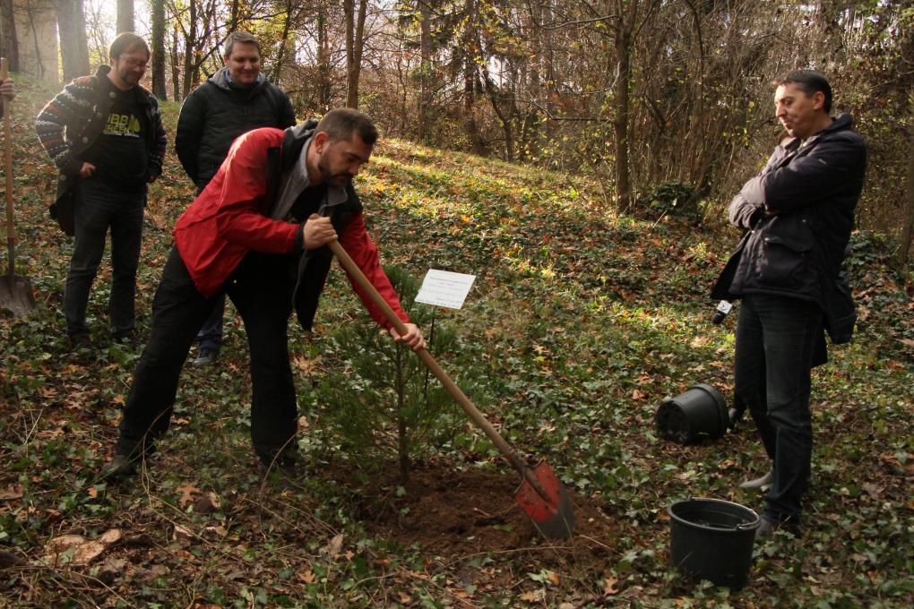 Botanikus kerti nagytakarítást szervezett a BBTE