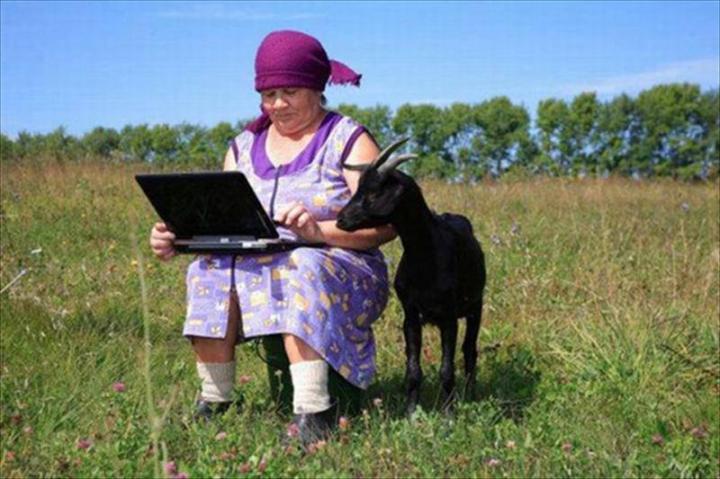 Mennyire elterjedt az internet-hozzáférés Romániában?