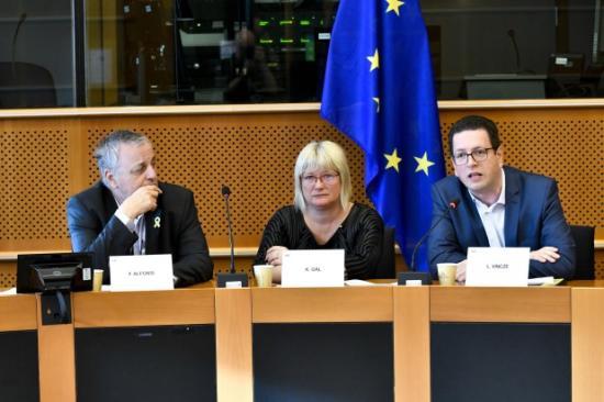 Vincze Loránt az EP Kisebbségi Munkacsoportjának társelnöke