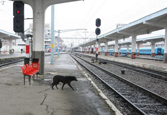 Lassan döcög az európai színvonal felé a román vasút