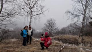 Keserédes januári kirándulás a Brüll-kilátóhoz