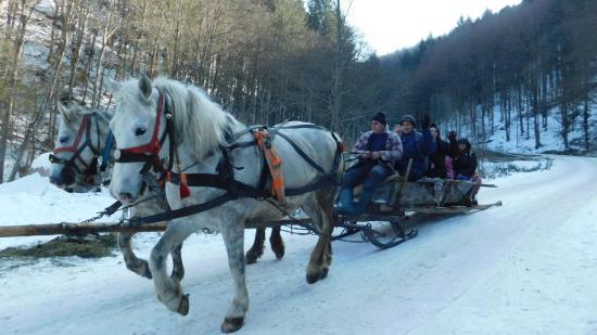 Székelyföldi lovasszánozás, avagy a tél örömei