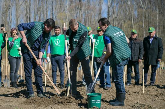 Országos erdősítési kampány kezdődött