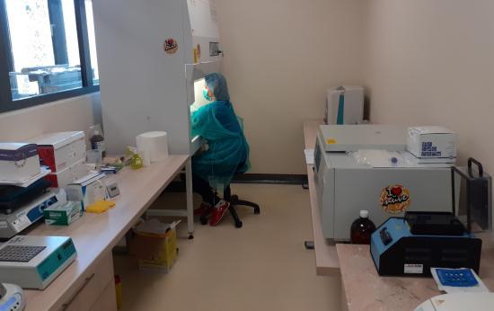 A kolozsvári egyetemek is bekapcsolódnak a vérminta-elemzésbe