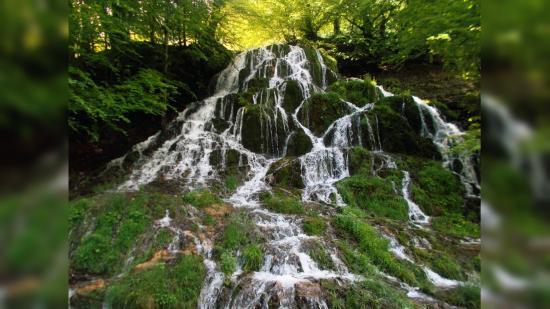Foteltúra kedvenc tavaszi vidékeken