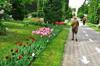 Mától látogatható a botanikus kert
