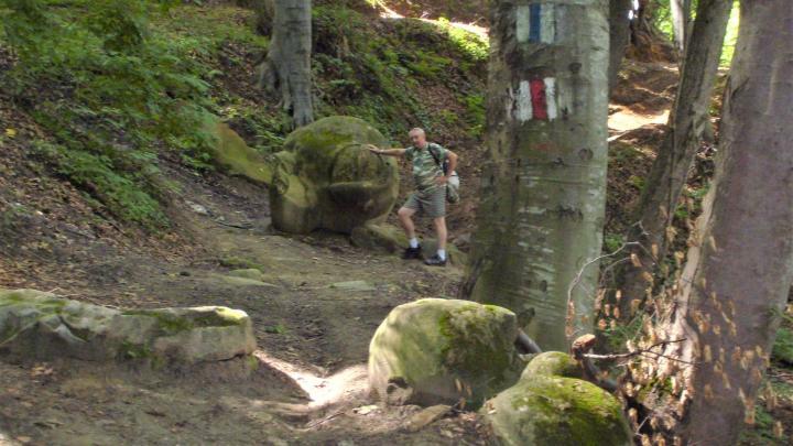 Kirándulni hármasban május 15. után: jelzett túrautak a kolozsvári Bükk-erdőben