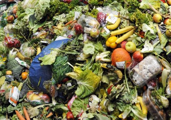 Adókedvezmény az élelmiszerpazarlás csökkentéséhez hozzájáruló cégeknek