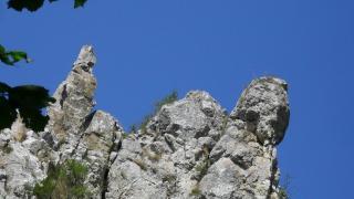 A titokzatos Túri-hasadék, Szent László kútja és a kőpénzek legendája
