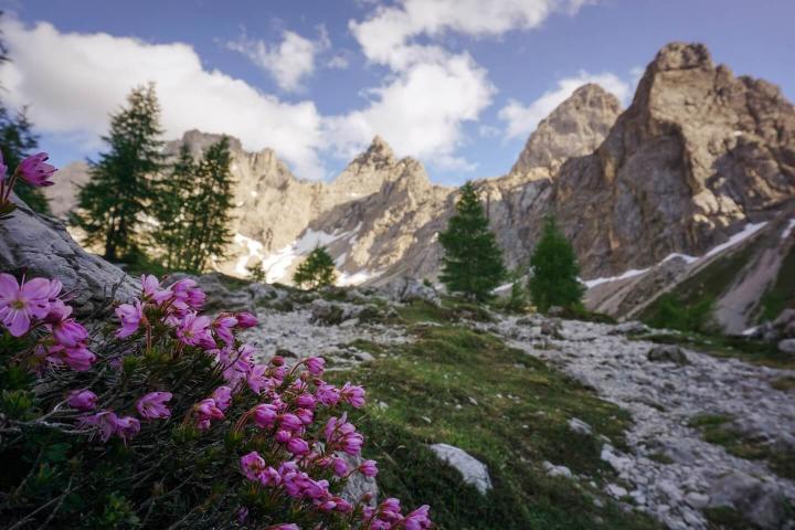 A nyári előszezonban csaknem háromnegyedével csökkent az osztrák turisztikai forgalom