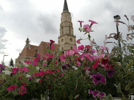 Várják a pályázatokat a Virágos Kolozsvár versenyre