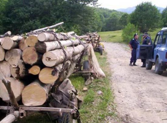 Elbukott az alkotmánybíróságon a környezetvédelmi ügyészség létrehozása