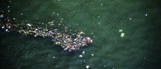 Természetvédelmi Világszövetség: évente 230 ezer tonna műanyag kerül a Földközi-tengerbe