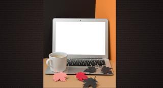 Online ősz