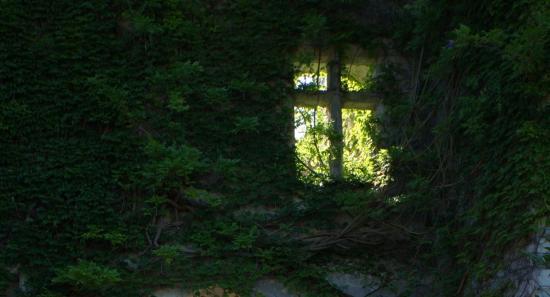A fény keresése - Brian James Johnston kiállítása
