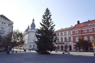 Áll a Főtéren a vásárkárpótló karácsonyfa