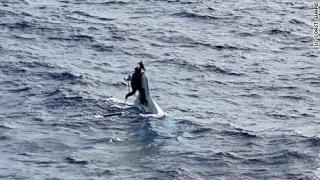 Felborult hajójába kapaszkodva találtak rá a napok óta eltűnt floridai férfira