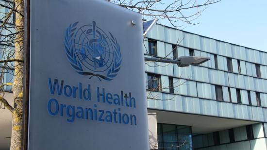 Csütörtökön várják Kínába a WHO szakértőit a vírus eredetének felkutatására
