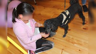 Nem gáz a gyereknek felvállalni: ma félős kutya lennék