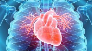 Magyar állami támogatással rendeznek be kardiológiai központot Csíkszeredában