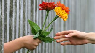 Nem tilos a márciuska és nőnapi virágcsokor