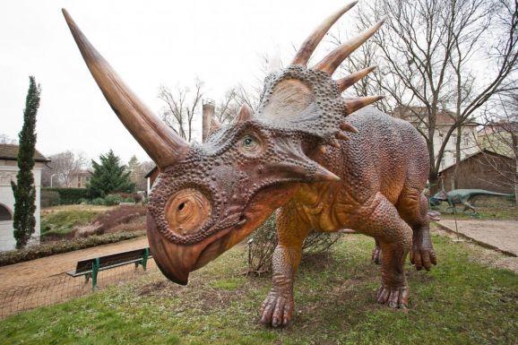Száz éve elfeledett dinoszaurusz-lelőhelyeket fedeztek újra fel Erdélyben