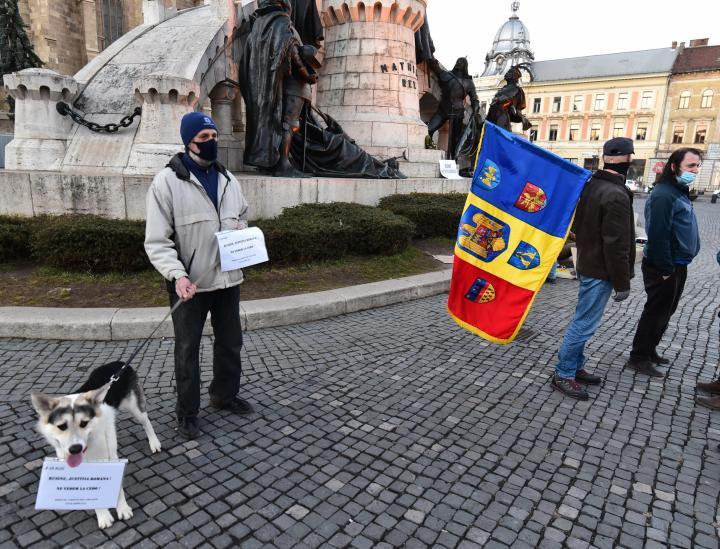 A diaszpóratüntetés ügyében hozott törvényszéki ítélet ellen tiltakoztak