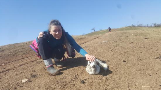 Zöldfülűként Kolozsvár-környéki túraösvényeken