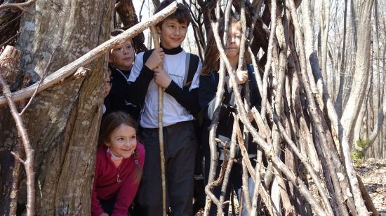 Fedezzünk fel egy zöldfülűvel Kolozsvár-környéki túraösvényeket!