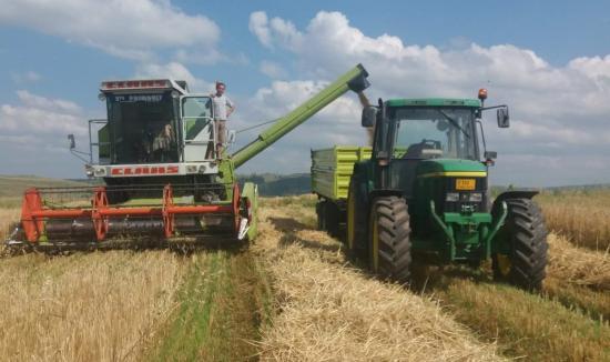 Valós helyzetképet várnak a mezőgazdasági összeírástól