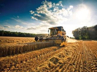 Több mint 800 ezer agrártámogatási kérelmet nyújtottak be a romániai gazdák