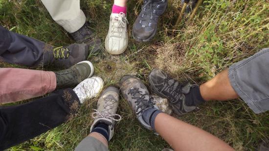Gyűjtögető túrák, bringás gyerektúra a Székelykőn, Vasvári és Bánffy – itt a júliusi bakancslista