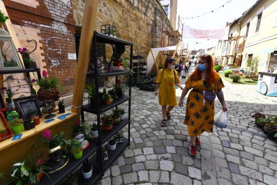 Virágvásár nyílt a Fogoly utcában