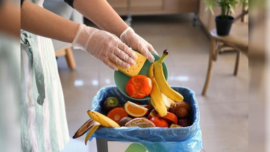 Több ezer tonna élelmiszert eldobunk naponta Romániában