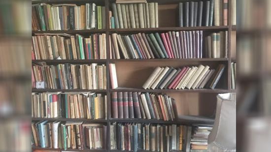 Könyvtárat álmodni és tervezni Hawaiiból Magyarfenesre