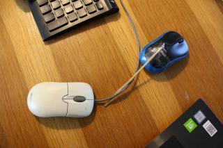 Karantén-leleményesség: vasalódeszkából laptoptartó, aszfaltra rajzolt szív nagyinak