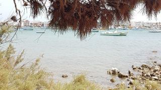 Két hét az égig érő pálmafák, gyümölcsöző óriáskaktuszok, a frutti di mare és orecchiette hazájában